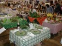 Previous: Table settings with froggy themes. The Fair\